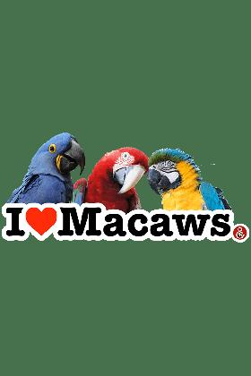 Koelkastmagneet I Love Macaws