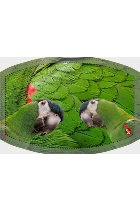 Deze niet-medische mondkapjes met print van een Ara Nobilis zijn herbruikbaar, wasbaar op 60 graden celcius en zijn vervaardigd van een polyester stof waardoor ze niet nat worden van vochtige adem.