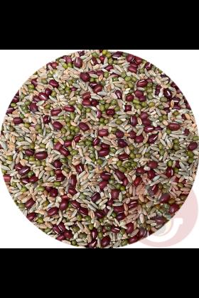 Deze mengeling Kiemzaden grof is samengesteld uit volledig biologische zaden en peulvruchten en zijn een bron van vitamines, mineralen en anti-oxidanten. Onmisbaar in het dieet van jouw papegaai.