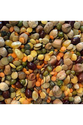 Deze gezonde Papegaai & Zoo Bonen-Mix hebben wij zelf samengesteld en is een verrijking van het dieet van jouw kromsnavel. Vanwege het hoge gehalte aan vitaminen, mineralen en vezels is deze bonen-mix een gezonde en voedzame vitaminen en mineralenbom.