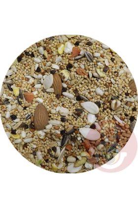 De Premium Caique zaadmengeling is speciaal samengesteld voor de Caiquesoorten. Deze voedzame zaadmengeling is de perfecte aanvulling op hun dieet.