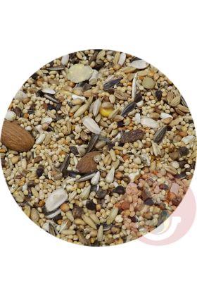 De Premium Meyer Papegaai zaadmengeling is speciaal samengesteld voor de Meyer Papegaai. Deze voedzame zaadmengeling is de perfecte aanvulling op hun dieet.