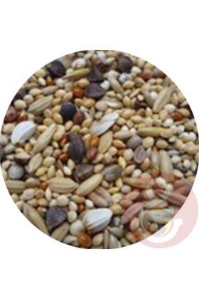 De Premium Neophema zaadmengeling is speciaal samengesteld voor de Neophema soorten. Deze voedzame zaadmengeling is de perfecte aanvulling op hun dieet.