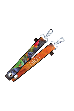 Stoere XL Sleutelhanger / Tassenhanger - Lori #lori #sleutelhanger #keychain #papegaai #parrot #goededoelen #sturdy