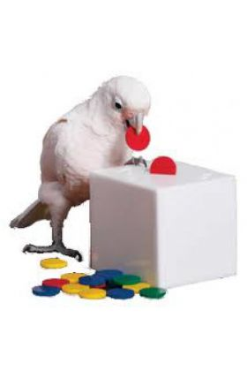 Papegaaiachtigen staan erom bekend dat ze het leuk vinden om dingen ergens in te stoppen. De Zoo-Max Teach Box & Bank is daarom een goed spel om met trainen te beginnen.