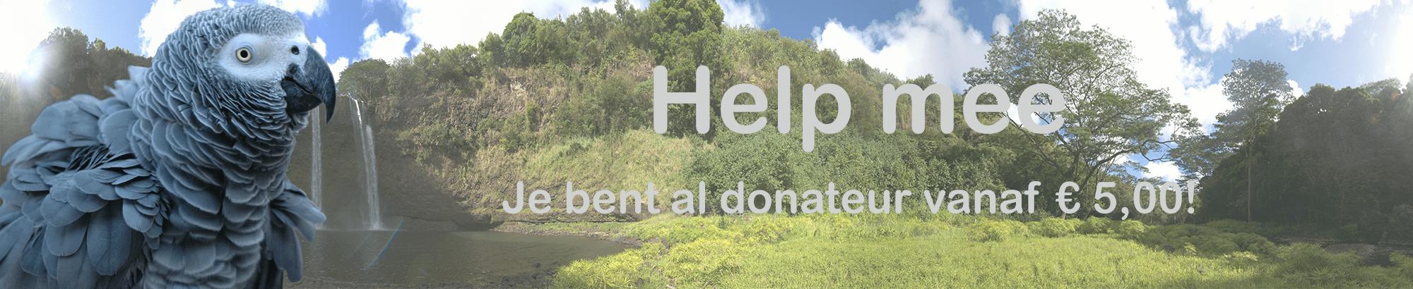 Wordt Donateur en steun ons!